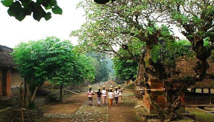 tenganan-pegringsingan-ancient-village